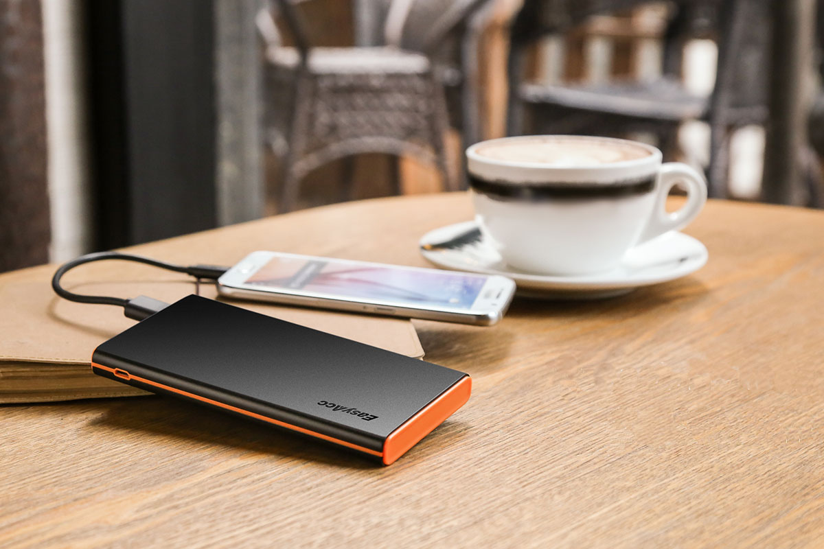 Top 5 Best Quick Charge Power Bank: Easyacc-10000mah-Power-Bank-