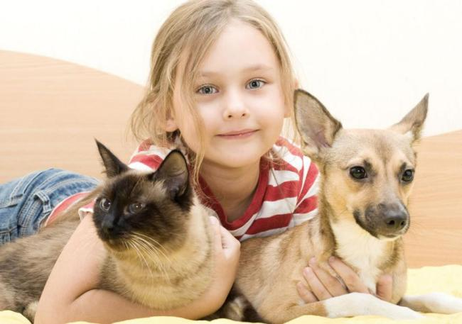 Christmas_gifts_for_child:pet