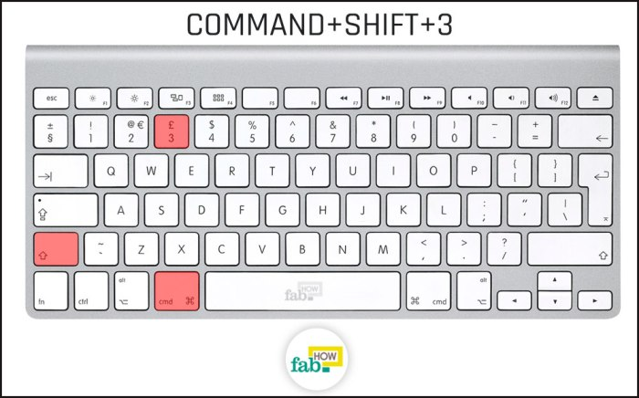 hold_down_command_and_press_shift + 3#