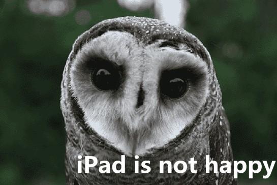 iPad is not happy