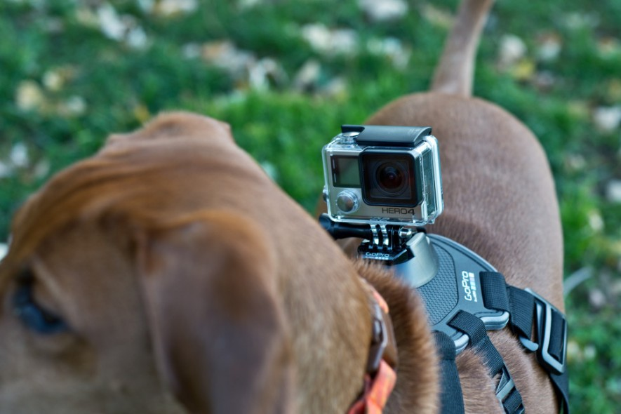 What is GoPro Camera Used For?